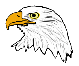 Head of an eagle in graphic style