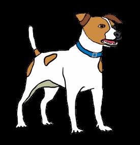 How To Draw A Stick Dog