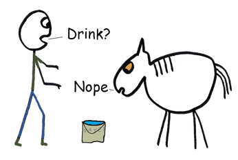 Illustrated expressions: You can lead a horse to water but you can't make him drink